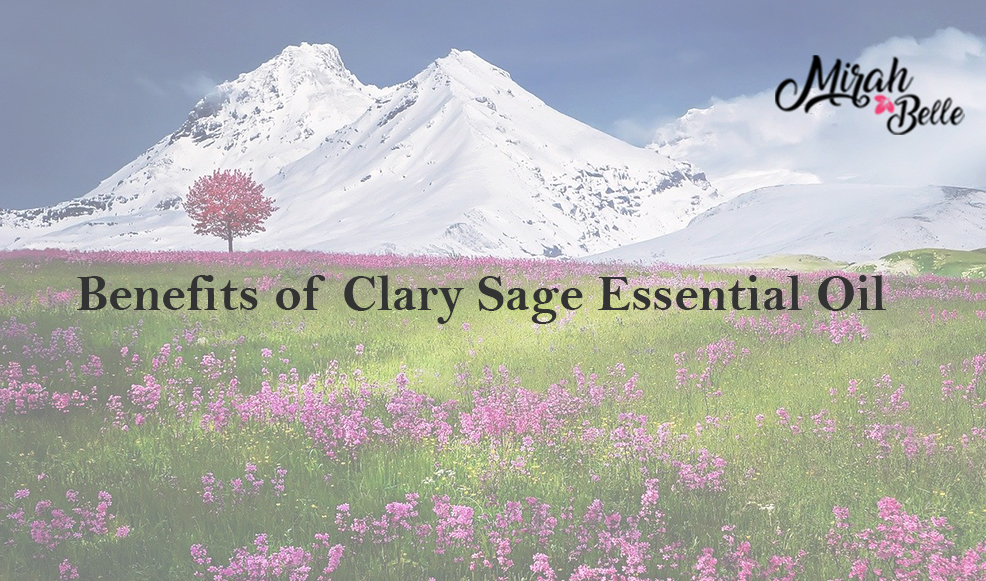 Clary Sage Essential Oil - Benefits in Skin Care, Menstural Pain and Hormonal Balance