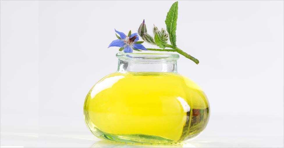 borage oil benefits