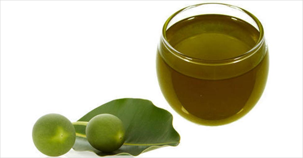tamanu oil ingredient