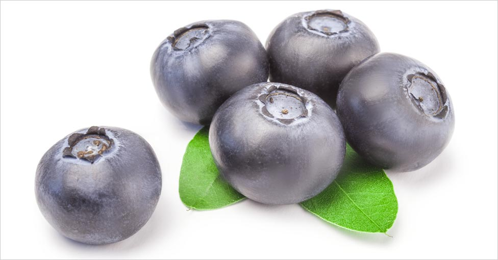 Blueberry for hair care