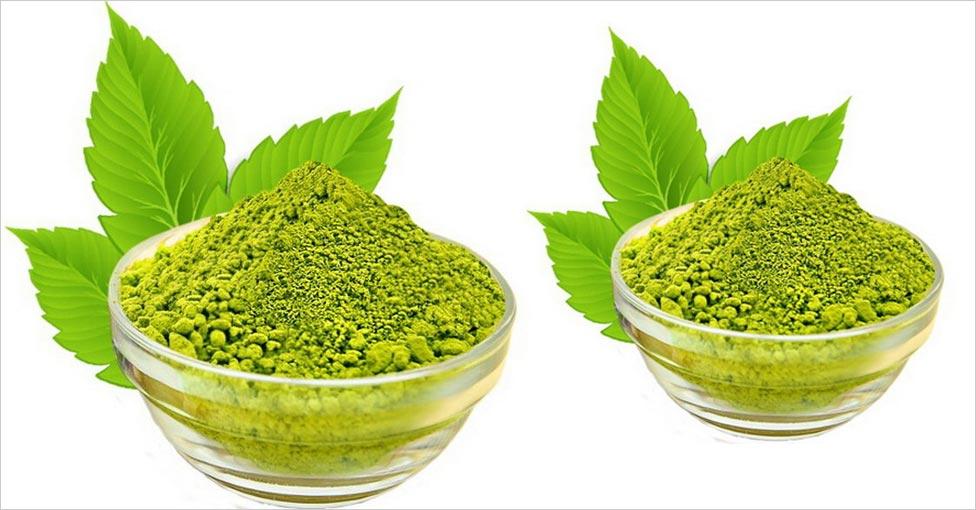 henna powder plant