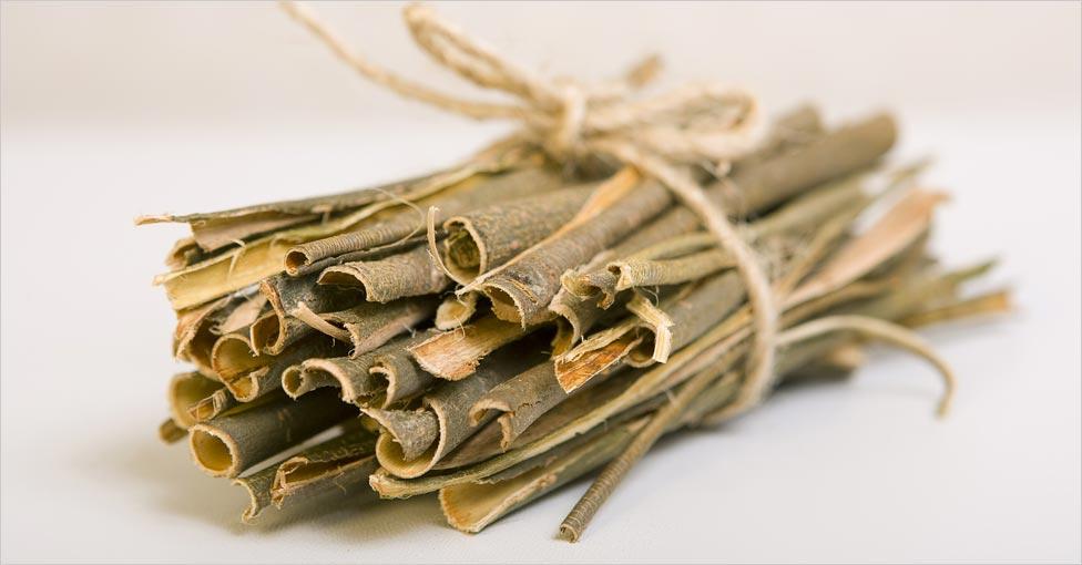 willow bark dandruff
